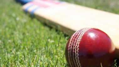 cricket_ball_on_the_grass